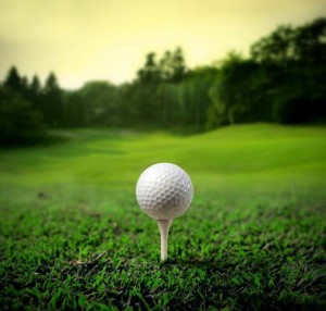 Madison area golf course homes